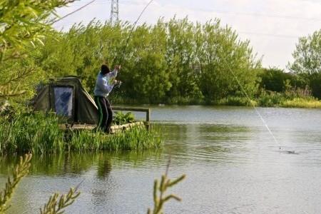 Four Seasons Fisheries